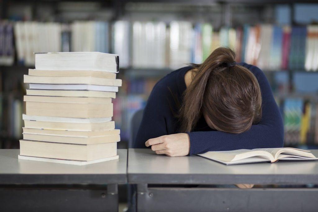 Ausbildung oder Studium - Lernen in der Bibliothek